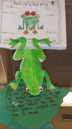Red-eyed tree frog craft for Rainforest project (red eye tree frog or poison dart frog)