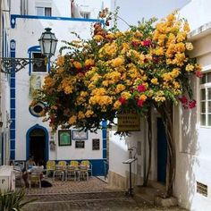 Albufeira, Portugal - a coastal city in the southern Algarve region Photo Portugal, Visit Portugal, Spain And Portugal, Portugal Travel, Faro Portugal, Portugal Trip, Places Around The World, Oh The Places You'll Go, Travel Around The World