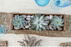 spring-turquoise-yellow-burlap-vintage-crate-table-centerpieces07 by brancoprata, via Flickr