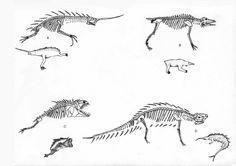 Microbrachioform Bones by PousazPower on DeviantArt Creature Concept Art, Creature Design, Creature Drawings, Alien Creatures, Monster Mash, Dragons, Bones, Moose Art, Sci Fi