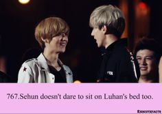 EXO Facts #767 ♥