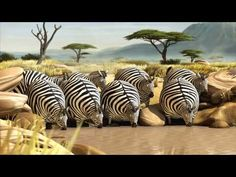 Roll'n Safari Animated Shorts of Bloated & Round Wild Animals  Animation/graphic majors - as well as marketers and lovers of weird stuff will like this video :)