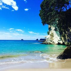[How are we at 2000 posts already?! Time flies!] Another glorious shot of Cathedral Cove. We're only a few days into spring! Please let it be like this all summer!  Pic: @whatkatydid.nz  #hakatours  _________________________________  #cathedralcove #seasons #nz #travel #newzealand #kiwi #instatravel #travelgram #spring #nature #northisland #southisland #aotearoa #scenery #sceneryporn #beautiful #cold #ourplanetdaily #neverstopexploring #lonelyplanet #splendid_earth #tourtheplanet…