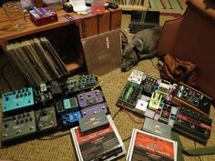 Lots of pedals and one adorable pup :D from Twitter user @yendorbackwards