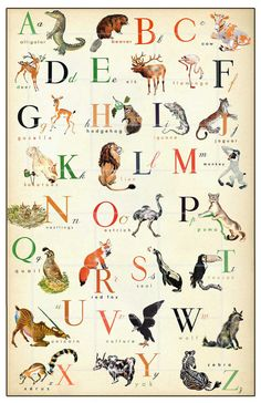 L'anglais de Version Alphabet merveilleux Animal par ChildsTouch