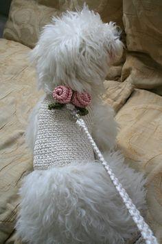 Dog Harness Cream & Rose  with matching leash  size XXS by BubaDog, $46.00