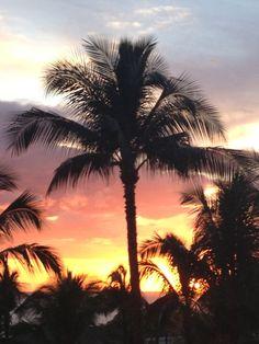 Tropical travel Hawaii