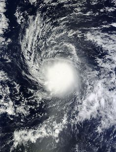 The center of Tropical Storm Ana was located near latitude 14.1 north, longitude 150.3 west. That's about 500 miles (805 km) east-southeast of Hilo, Hawaii.  Ana is moving toward the west near 10 mph (17 kph) and is expected to turn to the northwest on Oct. 17. The estimated minimum central pressure is 1000 millibars.  Ana is forecast to move to the west-northwest and strengthen into a hurricane, approaching the big island of Hawaii by Saturday,   http://www.prh.noaa.gov.