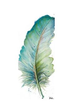 Watercolor Feather White IV Art Print