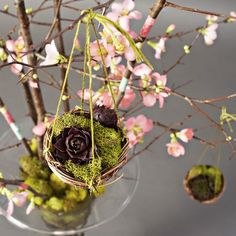 A beautiful Easter tree - inspired by the garden and the language of spring by Roanne Robbins (photo Kelly Fitzsimmons) www.pithandvigor.com