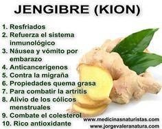 El jengibre es un alimento anticancerígeno: