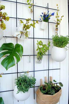 Oikotie - Kotiin – Blogit | KOTIKIIKARISSA – KOTIKIIKARISSA-blogi: Tee-se-itse- kasviseinä
