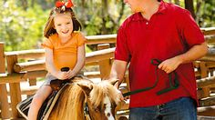 Pint-sized cowpokes can climb aboard the petite ponies at Tri-Circle-D Ranch. Afterward, they may even get to see Cinderella's Ponies!  Pony rides are offered daily from 10:00 AM to 5:00 PM near Pioneer Hall at Disney's Fort Wilderness Resort & Campground.