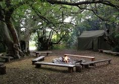 The camping site (under the shadow of a old White Stinkwood tree) at Platbos Forest Retreat, Gansbaai, Western Cape, South Africa Travel Around The World, Around The Worlds, Go Camping, Camping Outdoors, Camping Site, Camping Places, Built In Braai, Best Places To Camp, Cabins And Cottages