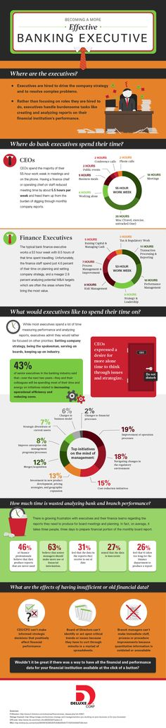 Banking Executive Infographic