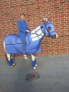 OMG maybe I can do that for the Fancy dress class at my next Horse Show! lol :D  tardis horse ?