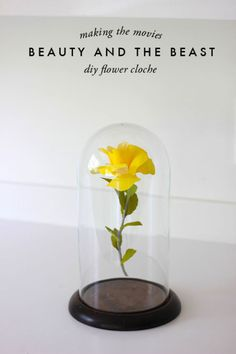 Make the Disney movie come to life with this Beauty and the Beast-inspired flower cloche. Get the tutorial at The House That Lars Built.