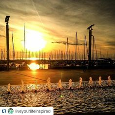 #Repost @liveyourlifeinspired with @repostapp  Follow back for travel inspiration and tag your post with #talestreet to get featured.  Join our community of travelers and share your travel experiences with fellow travelers atHttp://talestreet.com Lausanne fountains and sunset!  Definitely one of the best sunsets I have ever seen! #liveyourlifeinspired #travel #explore #switzerland #lausanne #sunset #fountain #world_skyshotz #wanderlust #doyoutravel #follow #travelgram #instatravel #traveler…
