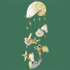 Seashell wind chime