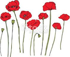 Image result for poppies drawing