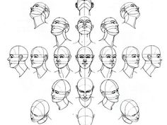 Perspectives for drawing the human head