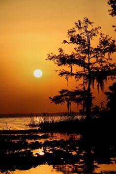 Photographer Charles Richardson published photo IMG_0123m_resize in album Florida Postcards 2011 on Photographytalk.com