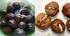Vlašské orechy majú nesporne veľa výhod pre ľudské telo avšeobecné zdravie. Ak ich jedávame pravidelne, vieme mnohým ochoreniam aťažkostiam predísť anavyše sa doslova nadopujeme látkami potrebnými pre správne fungovanie nášho metabolizmu. Od cenných mastných kyselín, cez bielkoviny až po vitamínové bomby nám orechy vedia priniesť do života aj dobrú náladu anepoznanú radosť. Výskumy totiž jednoznačne …