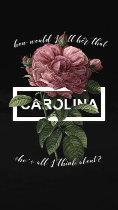 Carolina~ Harry Styles