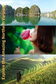 The post highlights the most beautiful destinations in Northern Vietnam. You will enjoy it! Beautiful Landscape Wallpaper, Beautiful Landscapes, Bodybuilding Meal Plan, Bai Tu Long Bay, Cat Ba Island, Most Beautiful, Beautiful Places, Free Facebook Likes, North Vietnam