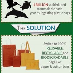 Wonderful tips to go green with reusable & recyclable cotton carrier bags. Once you have determined on buying a Pink cotton bag, select a bag that mat Plastic Carrier Bags, Cotton Bag, Go Green, Biodegradable Products, Recycling, Earth, Tips, Ideas, Plastic Bags