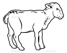 An illustration of a lamb, could be a food label or menu icon for lamb