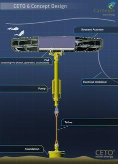 CETO 6 Concept Design