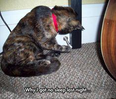 Why I Got No Sleep Last Night....