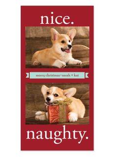Naughty or Nice? Christmas Photo Cards