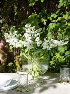 Flores salvajes en el exterior #Affari #estilonordico #flores