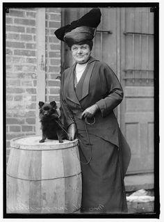 Dog Show 1915 by janwillemsen, via Flickr
