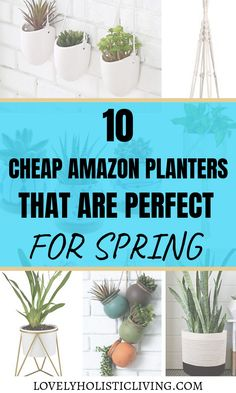 10 Cute & Affordable Indoor Planters from Amazon #amazonhomedecor Love these cute and unique planters that are cheap from Amazon! Planters are great, easy home decor for spring!! I love plants in my home! White Ceramic Planter, Wooden Planters, Indoor Planters, Amazon Home Decor, Easy Home Decor, Feng Shui, Indoor Tropical Plants, Plant Basket, Hanging Pots