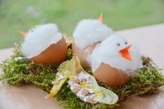 """Ein fröhliches Hallo ihr Lieben, wir haben uns in den letzten Tagen mit einer sehr interessanten Bastelidee auseinandergesetzt, die uns so begeistert hat, dass wir gar nicht mehr aufhören konnten zu basteln🙂 Angeregt von UHUs Aktion """"UHU rettet die Eierschalen"""", in der es um die Weiterverwendung, dem Recyceln, von Eierschalen geht, haben wir unseren Speiseplan …"""