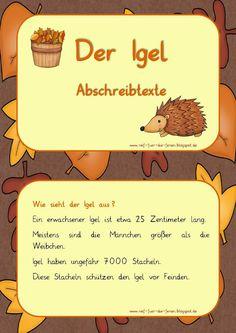 Igel-Abschreibtexte in Grundschrift - My best education list Secondary School, Primary School, Elementary Schools, Early Intervention Program, Deaf Children, Science, Teacher Blogs, German Language, Thing 1