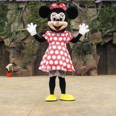 Google Afbeeldingen resultaat voor http://cdn100.iofferphoto.com/img3/item/202/974/938/l_brand-new-adult-size-minnie-mouse-mascot-costume-unisex-7fe38.jpg