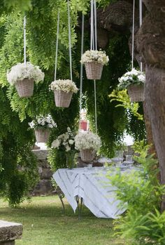 Buy small white hydrangea pots to hang in baskets for wedding and later plant on the property to watch bloom yr after yr Rustic Wedding Centerpieces, Wedding Decorations, Wedding Ideas, Wedding Rustic, Hydrangea Potted, Deco Floral, Garden Wedding, Flower Designs, Flower Pots