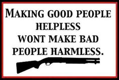 The right to keep and bear arms.. #2A www.thewellarmedwoman.com