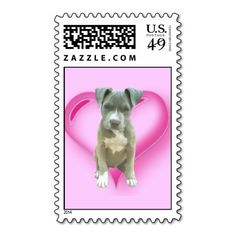 ==>Discount          Pitbull puppy postage           Pitbull puppy postage Yes I can say you are on right site we just collected best shopping store that haveHow to          Pitbull puppy postage Online Secure Check out Quick and Easy...Cleck Hot Deals >>> http://www.zazzle.com/pitbull_puppy_postage-172642273065445008?rf=238627982471231924&zbar=1&tc=terrest