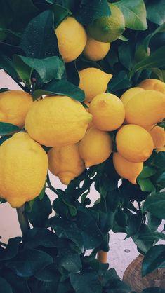 #Лимон #