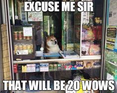 Wow such store, very business! Much expansive!