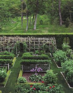 Lovelovelove the trellises, and REALLY love the idea of the greenery wall -- a hedge instead of a fence is quite an attractive idea for the vegetable garden (and a secret garden elsewhere) The vegetable and cut flower gardens at Rock Cobble Farm.: