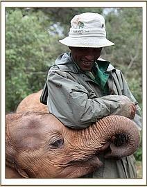 Sities, my foster elephant. I want to hug her for myself http://www.sheldrickwildlifetrust.org/asp/orphan_gallery.asp?Rhino=&N=229