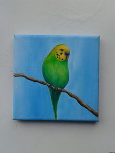 Original budgie painting ^-^