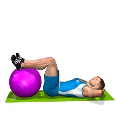 CRUNCH LEGS ON FITBALL INVOLVED MUSCLES DURING THE TRAINING ABDOMINALS