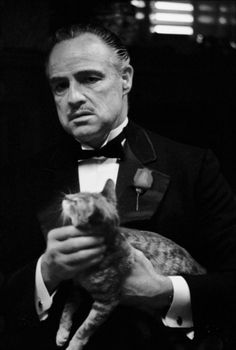 Steve Schapiro [The Godfather] Gangster cat @K D Eustaquio kiwi